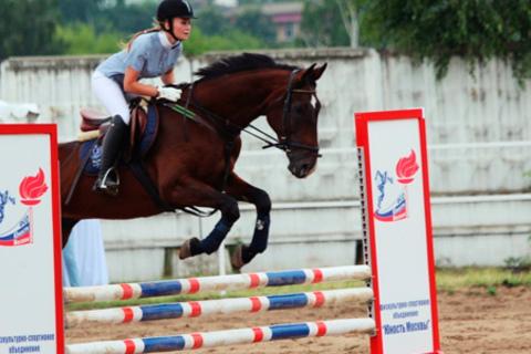 Тренировки по верховой езде, а также прогулки на лошадях с фотосессией для одного или двоих в конно-спортивном клубе «Дадмал». Скидка до 50% от КупиКупон