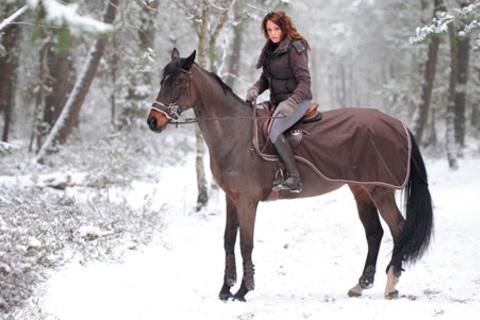 Романтическая прогулка верхом на лошадях для одного, двоих или четверых от конно-любительского клуба «Комета». Скидка до 73%