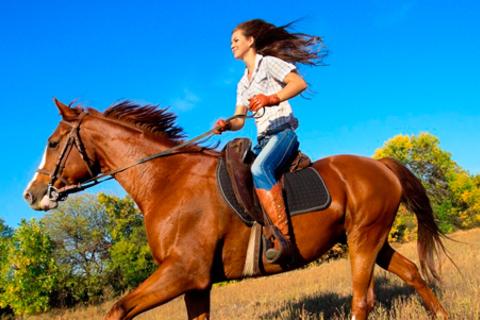 Прогулка на лошадях для одного или двоих с посещением мини-зоопарка и фотосессией от КСК «Кантри». Скидка 61%