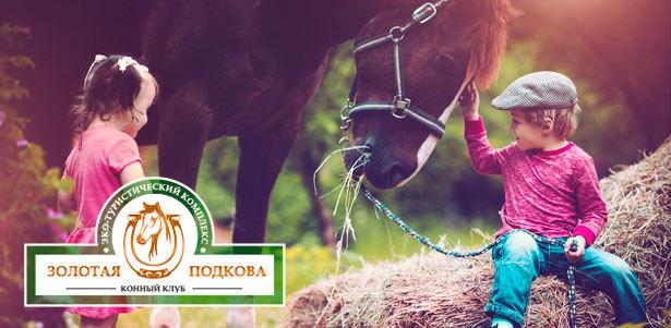 Программа «В гости к лошадкам» в конном клубе «Золотая подкова» – Саратов – КупиКупон